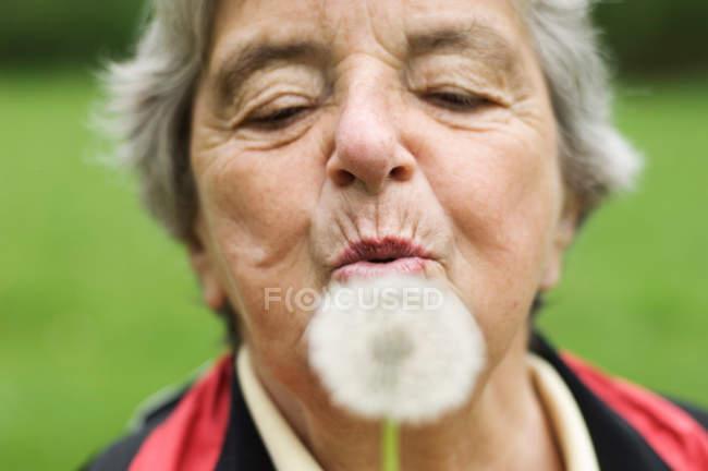 Дует Одуванчик женщина в парке — стоковое фото