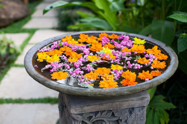 Fresh flowers in birdbath — Stock Photo