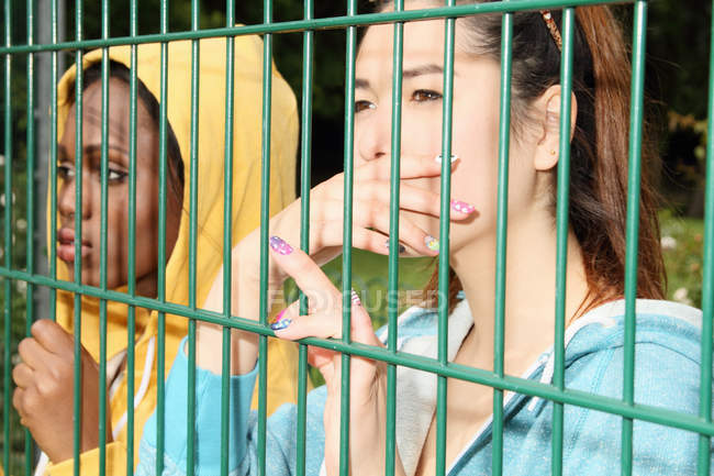Женщины смотрят через забор — стоковое фото