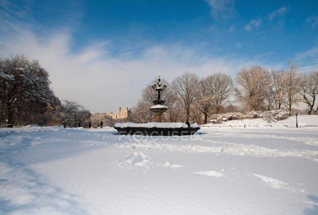 Fonte acima do lago do Central Park — Fotografia de Stock