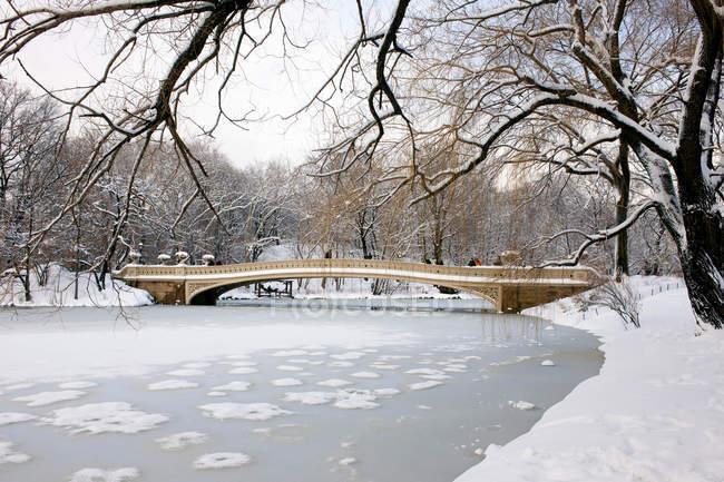 Ponte de arco no lago do Central Park — Fotografia de Stock