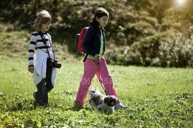 Children walking dog in field — Stock Photo