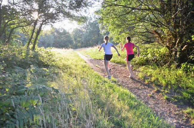 Две молодые женщины бегут по лесным дорожкам утром — стоковое фото