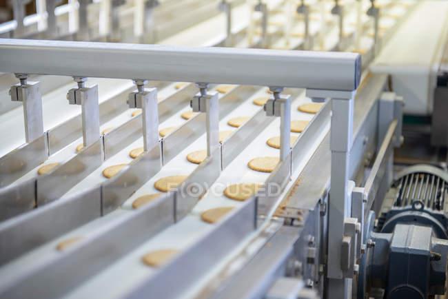 Свіжоприготований печиво на лінії виробництва — стокове фото