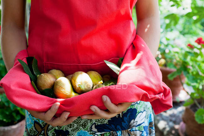 Woman carrying fruit in apron — Stock Photo