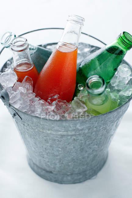 Bottiglie in secchio di ghiaccio — Foto stock