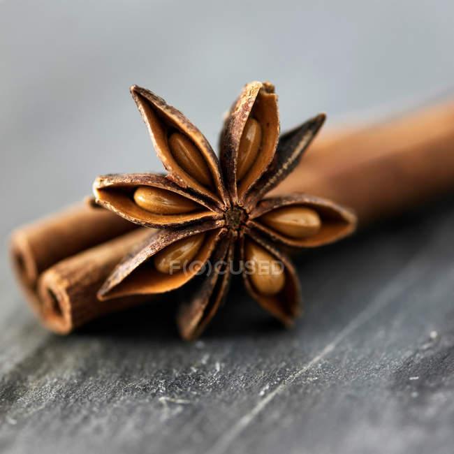 Épice d'anis étoilé — Photo de stock