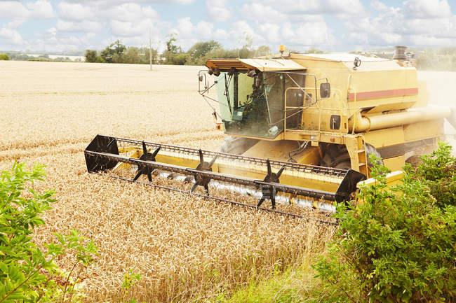Thresher working in crop field — Stock Photo