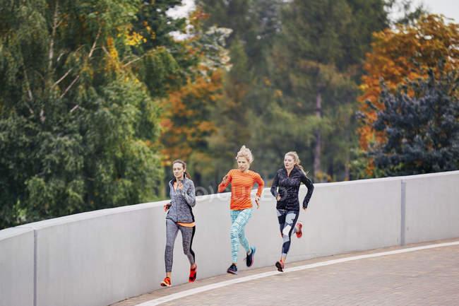 Three female runners running along park road — Stock Photo