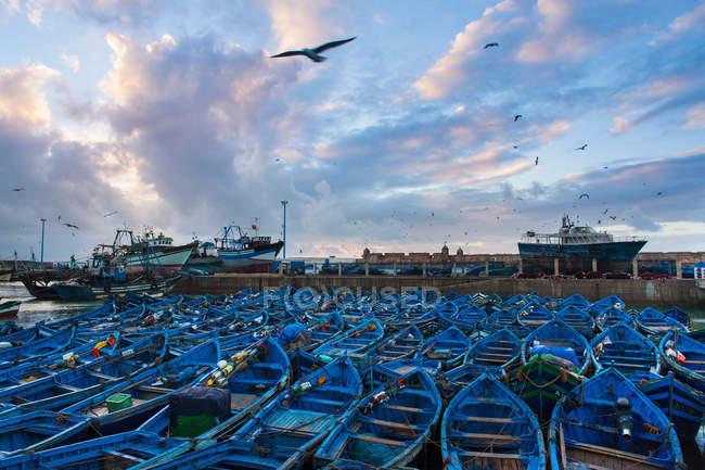 Boats in urban harbor — Stock Photo