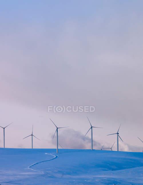 Parques eólicos em encostas nevadas — Fotografia de Stock