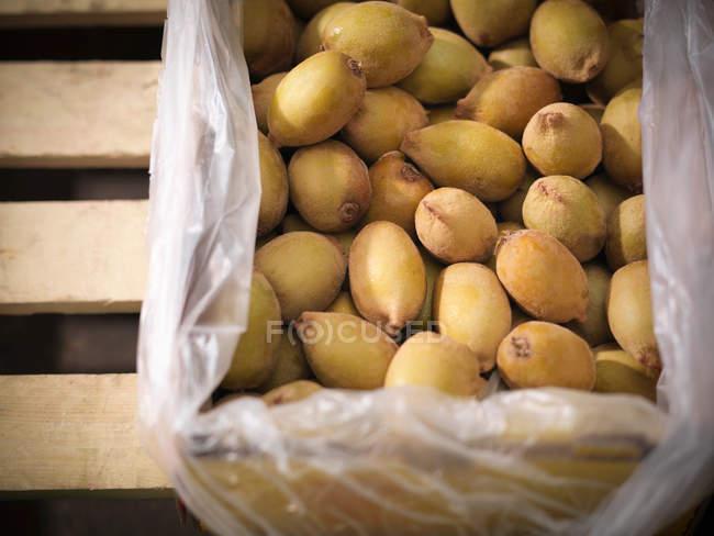 Box of golden kiwi — Stock Photo