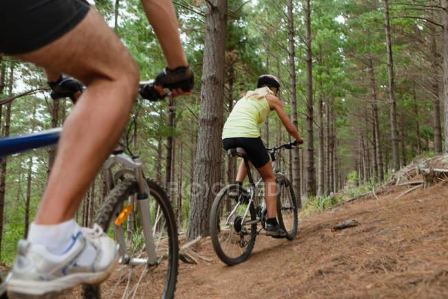 Пара горных велосипедов в лесу — стоковое фото