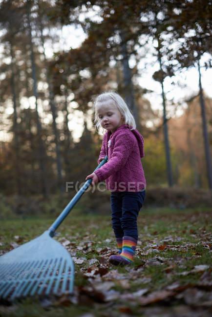 Toddler girl raking leaves in autumnal forest — Stock Photo