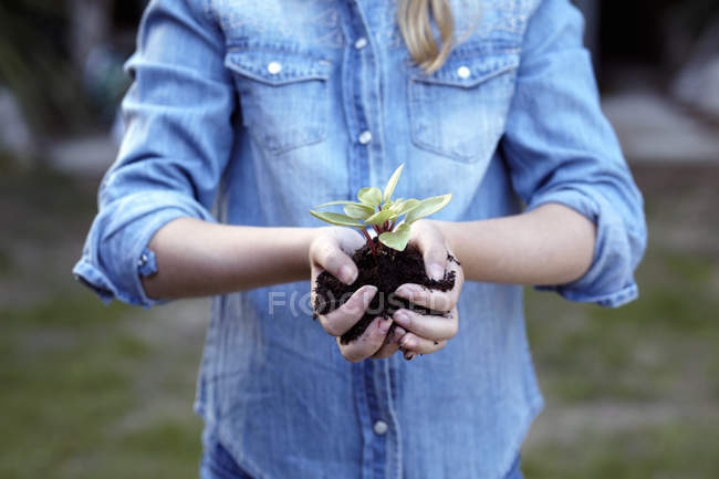 Close up of girl holding plant in pot soil — Stock Photo
