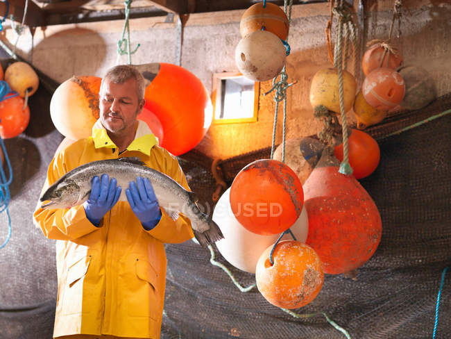 Fisherman holding freshly caught salmon in hut with buoys — Stock Photo