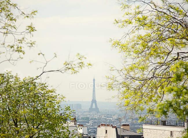 Toits de Paris avec tour eiffel — Photo de stock