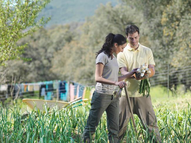 Мужчина и женщина смотрят на собранный лук — стоковое фото