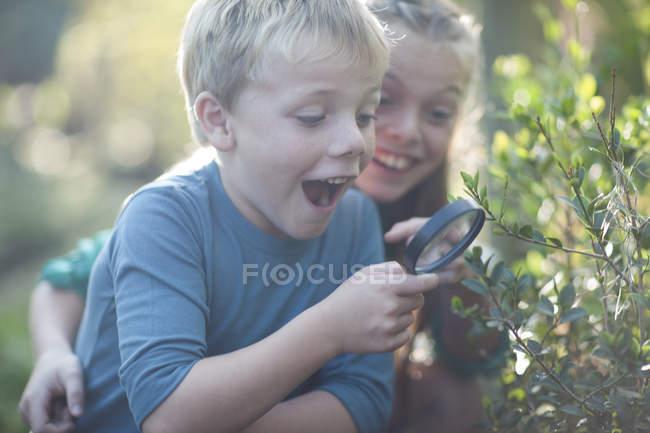 Frère et sœur découvrant des plantes à la loupe dans le jardin — Photo de stock