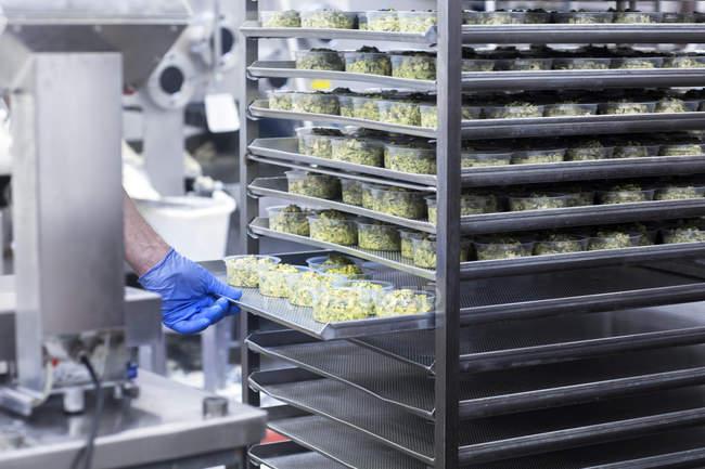 Кадроване зображення чоловічого працівник працює в органічних тофу виробництва заводу — стокове фото
