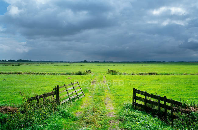 Dirt path in rural meadow — Stock Photo