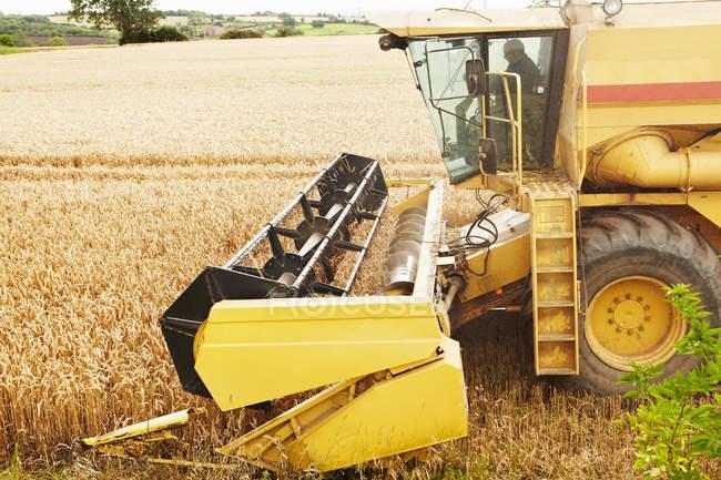 Порог, работающий на полях — стоковое фото