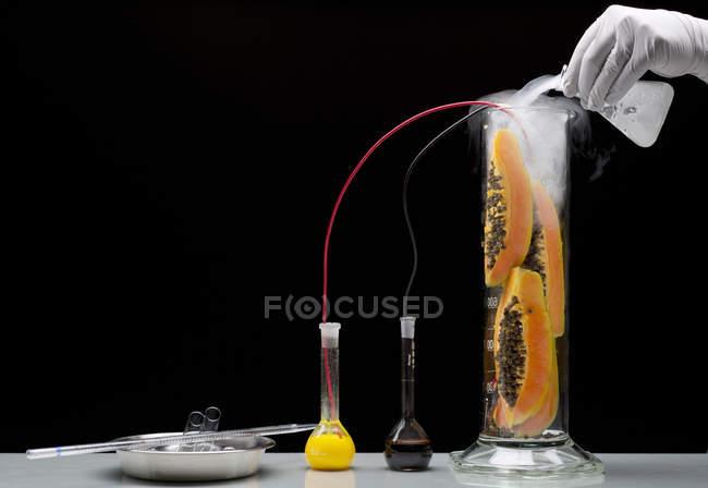 Вчений руку в рукавичка експериментувати на фрукти — стокове фото