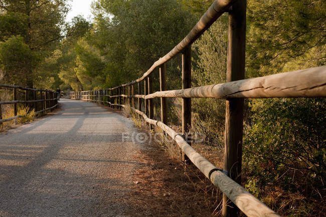 Wooden fence along rural road in sunlight — Stock Photo