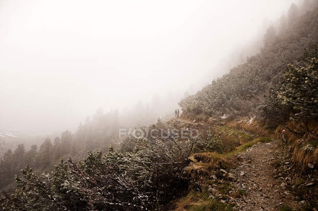 Passerelle sur montagne enneigée — Photo de stock