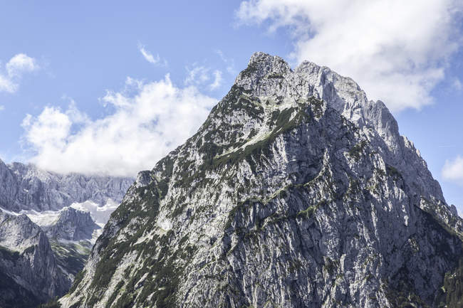 Трава росте на snowy гори — стокове фото