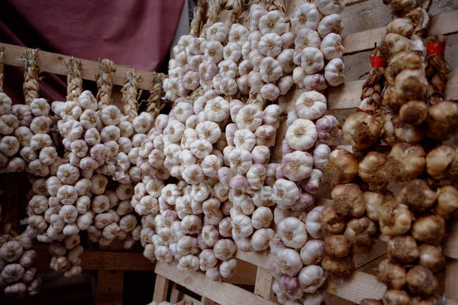 Stalks of garlic and onions for sale — Stock Photo
