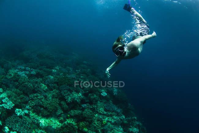 Buceador nadando en arrecife de coral - foto de stock