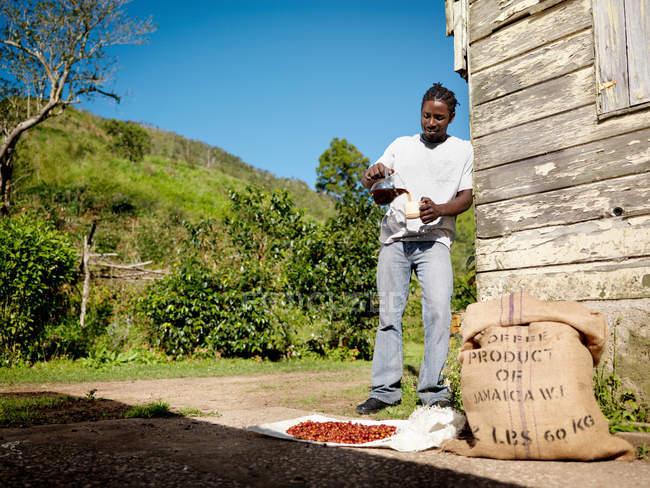 Travailleur du café Boire une tasse de café — Photo de stock
