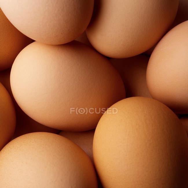 Коричневая куча яиц — стоковое фото