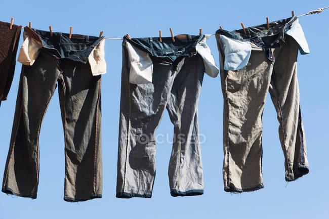 Штани на лінії одягу — стокове фото
