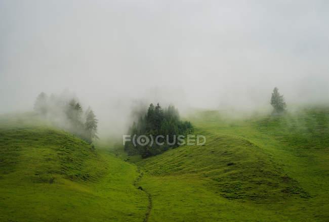 Mist over rolling landscape — Stock Photo