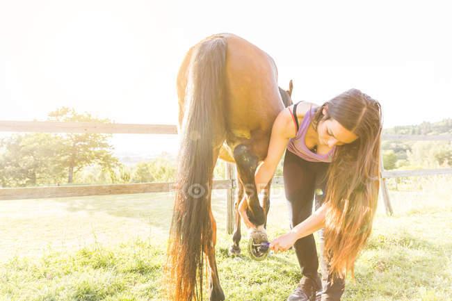 Woman checking horse hoof outdoors — Stock Photo