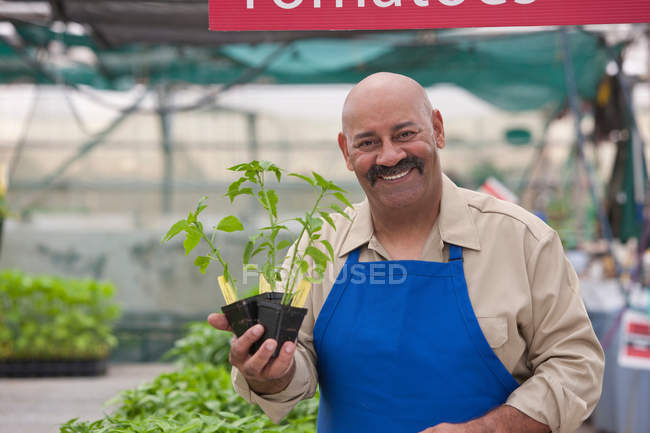 Mature man holding pot plant in garden centre, smiling — Stock Photo