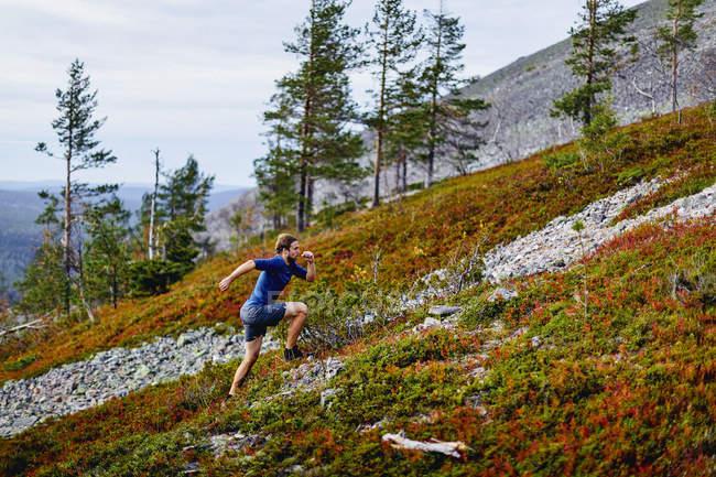 Man trail running up steep hill, Kesankitunturi, Lapland, Finland — Stock Photo