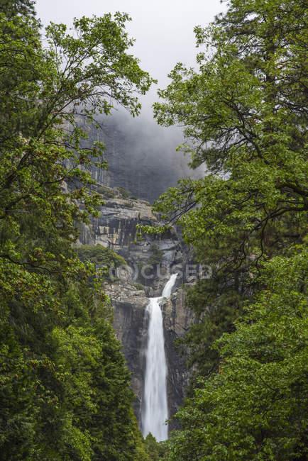 Veduta della cascata circondata dal verde degli alberi, Parco nazionale Yosemite, California, Stati Uniti — Foto stock