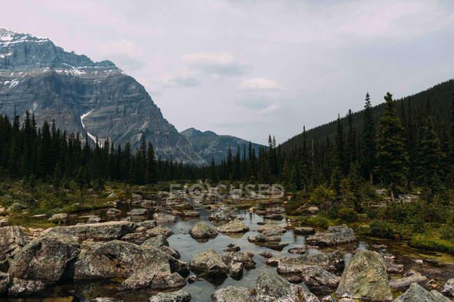 Cauce rocoso y cordillera bajo cielo nublado - foto de stock