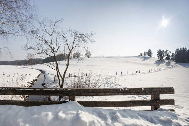 Fields covered with snow — Stock Photo