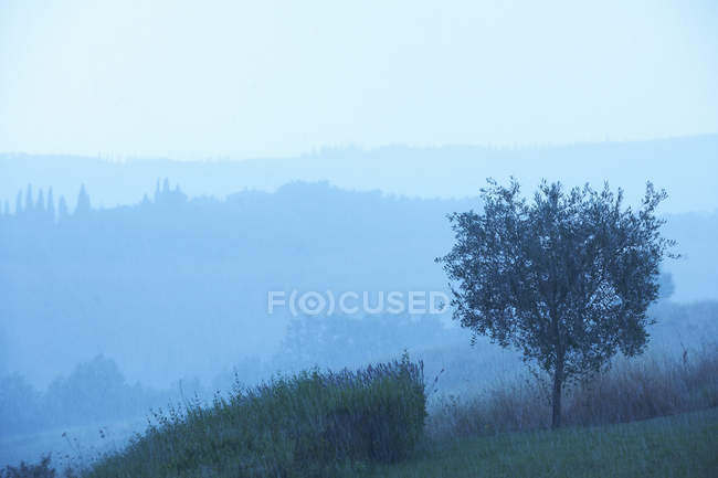 Vista del paisaje rural - foto de stock