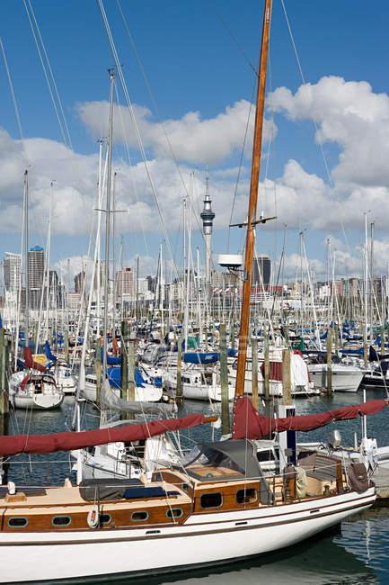 Boats moored at Westhaven Marina, Auckland — Stock Photo