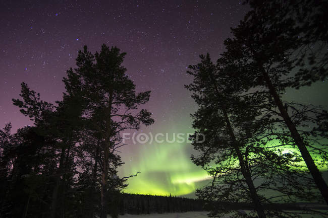 Majestuosa aurora boreal en el cielo nocturno, jukkasjarvi, Laponia - foto de stock