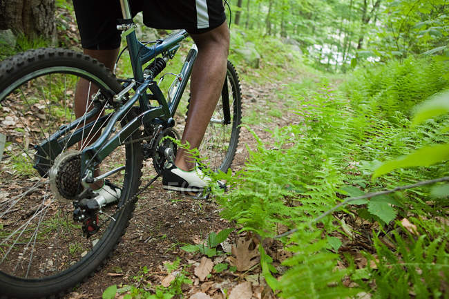 Tiro cortado de ciclista masculino na floresta — Fotografia de Stock