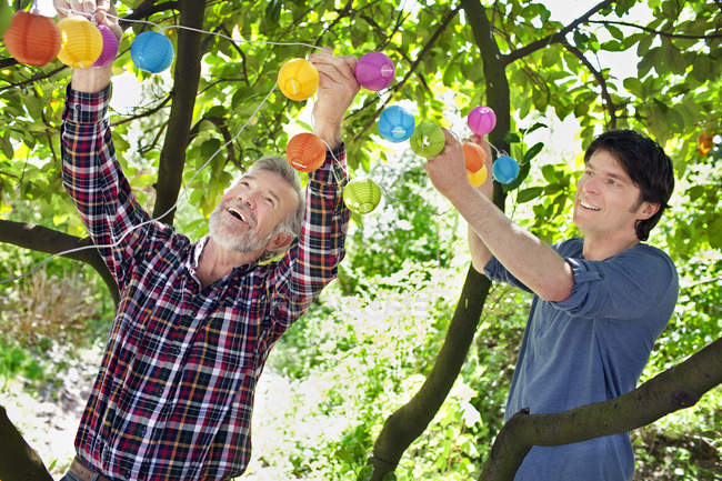 Father and adult son putting fairy lights in tree — Stock Photo