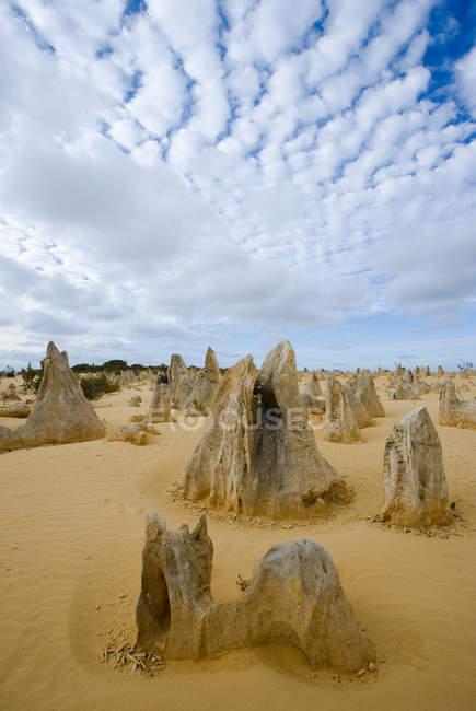 I pinnacoli nambung parco nazionale di Perth — Foto stock