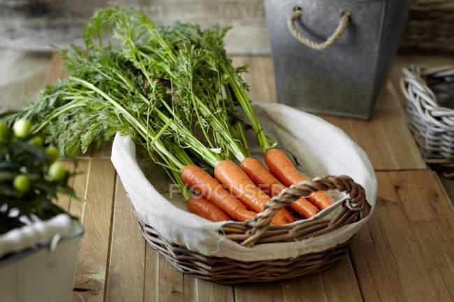 Zanahorias frescas en cesta - foto de stock