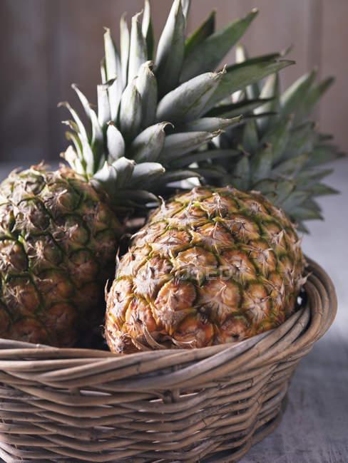 Due ananas freschi in cestino di vimini — Foto stock